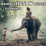 Animals Jigsaw Puzzle Elephants