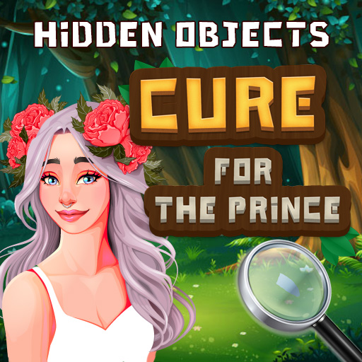Image Hidden Objects Cure For The Prince
