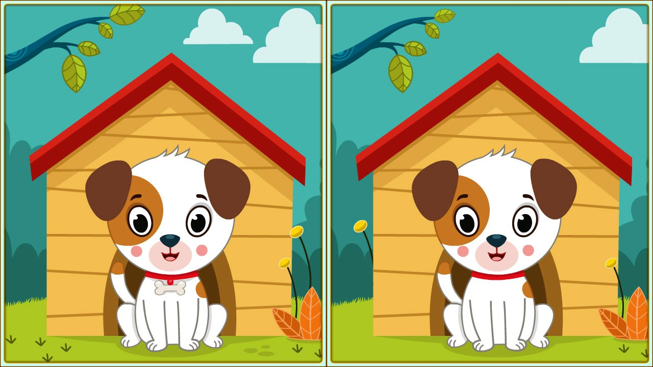 Image Spot 5 Differences