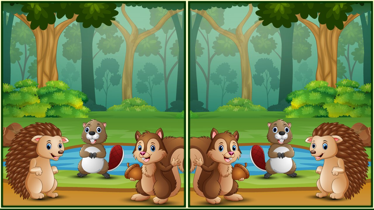 Image Spot The Differences Forests