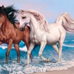 Animals Jigsaw Puzzle – Horses