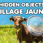 Hidden Objects Village Jaunt