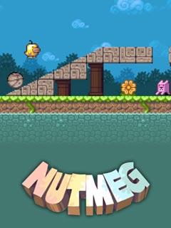 Image Nutmeg